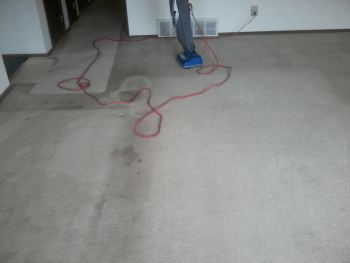 Heaven S Best Carpet Cleaning Milwaukee Wi Dry In 1 Hour