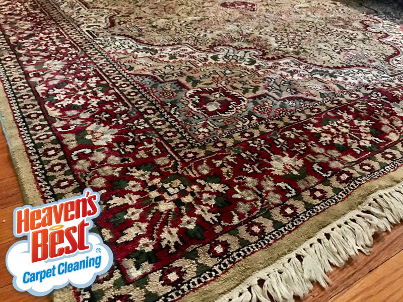 Heaven's Best Carpet Cleaning Milwaukee WI
